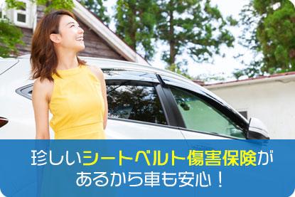 珍しいシートベルト傷害保険があるから車も安心!
